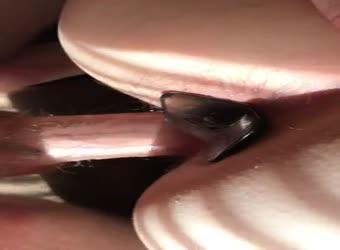 Her first DP with anal plug